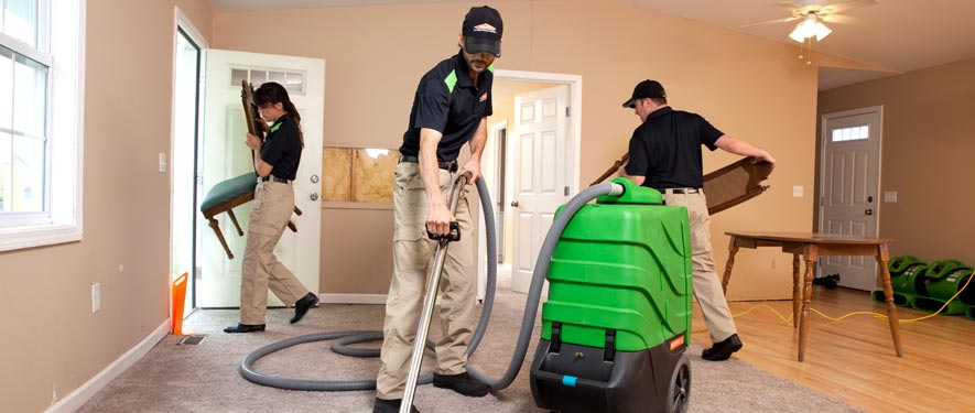 Thornton, CO cleaning services