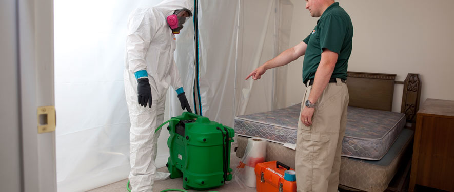 Thornton, CO mold removal process